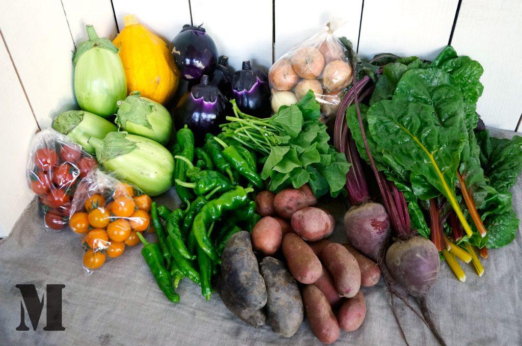 Mサイズの野菜セット
