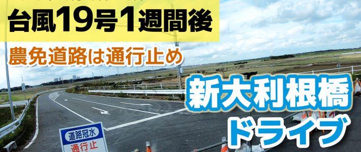 台風19号 一週間後 畑・利根川の様子 ドライブ