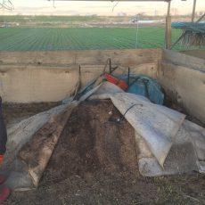 改良畜フン堆肥を仕込む
