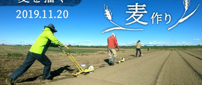 麦まきの日 麦の無農薬栽培に挑戦!