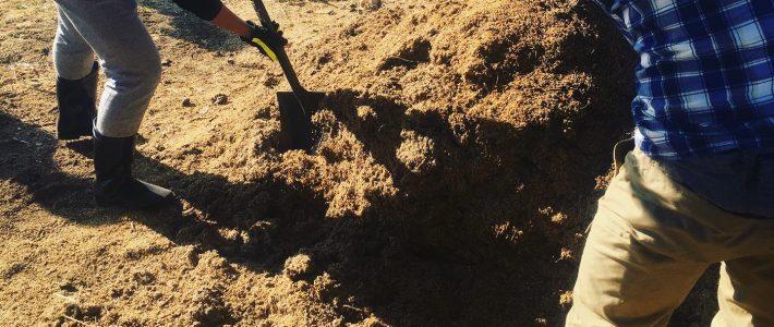シェフ達と生ごみ堆肥の準備、食の循環を実感できるお店へ