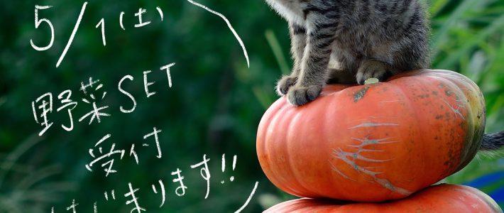 【2021】5/1野菜セット定期便の受付はじまります!
